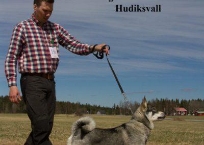 Östersundsutställningen 2017
